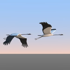 cranes flying birds 3D model
