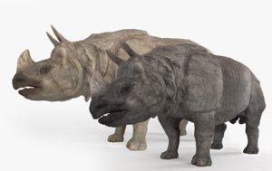 3D model rhinoceros indian rhino