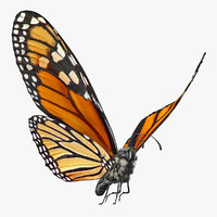 flying monarch butterfly fur 3D