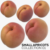 3D small apricots 01 model