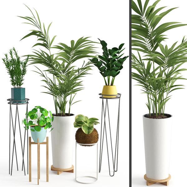 3D houseplant 39
