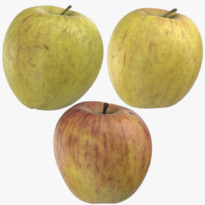 ambrosia apples 02 3D