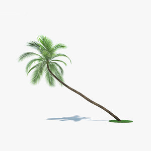 3D coconut palm