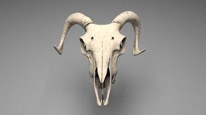 ram skull 3D model