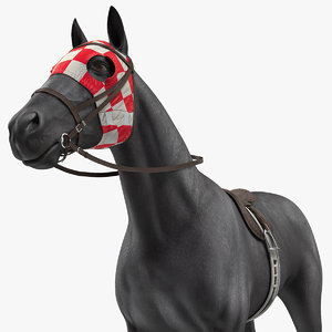 racehorse black horse model