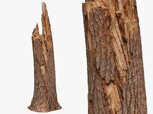 3D broken tree trunk