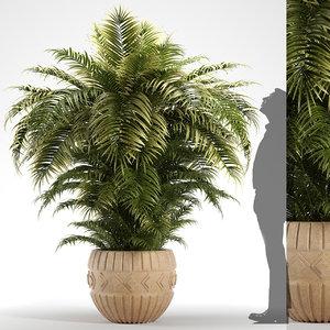 plants 221 indoor model