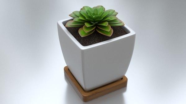 3D succulent pot