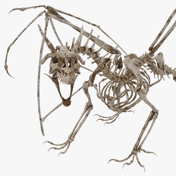3D bone dragon