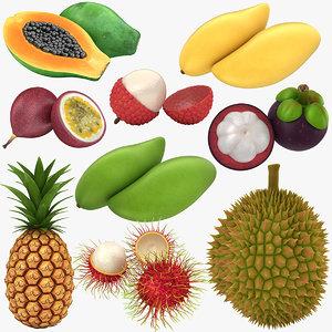 thai fruit 3D
