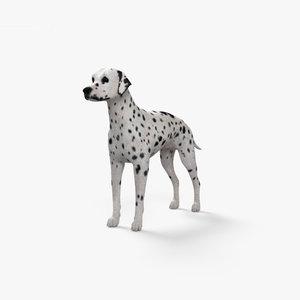 3D dalmatian dal