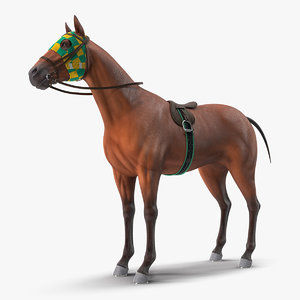 bay racehorse horse 3D model