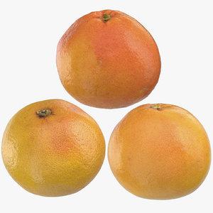 grapefruits 02 3D model