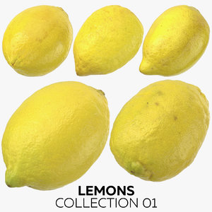3D lemons 01 model