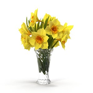 3D model flower narcissus