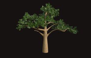 pine plant model
