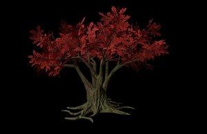 3D model old massive tree