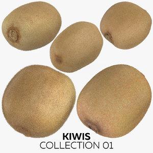 kiwis 01 3D model