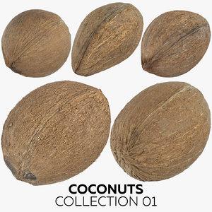coconuts 01 3D