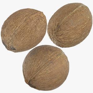 3D coconuts 02