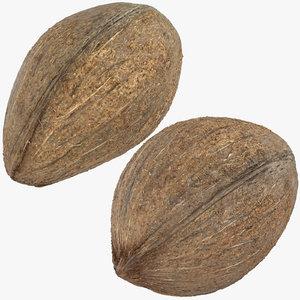 coconuts 03 3D