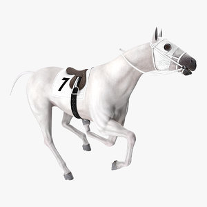 racehorse white horse rigged 3D model