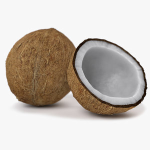 realistic coconut 01 3D model