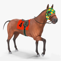 bay racehorse animal horse 3D model