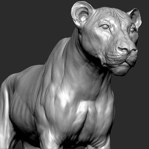 3D model lion cat big