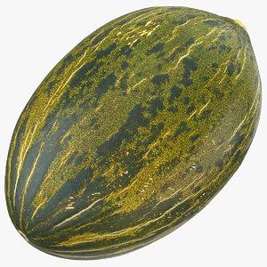 melon piel sapo 01 model