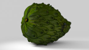 photogrammetry cherimoya fruit 3D model