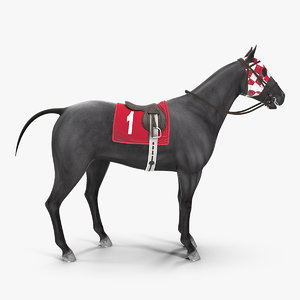 racehorse black animal horse 3D