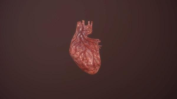 animation medical 3D model