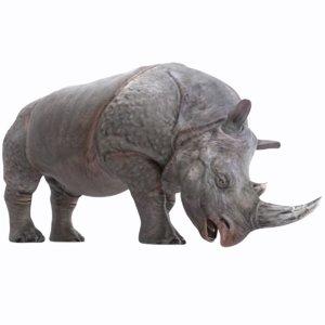 good african rhinoceros rigged 3D model