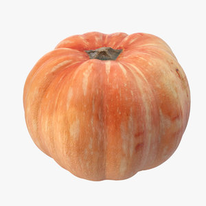 orange pumpkin model