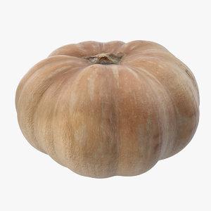 3D pumpkin food