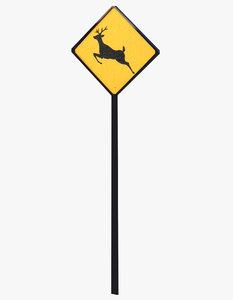 sign deer signal model