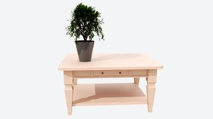 center wood table 3D model