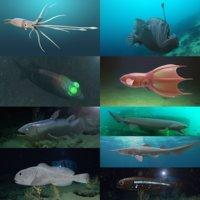 3D deep sea fish model