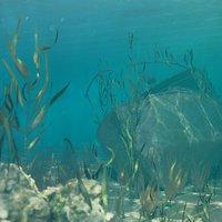 underwater shipwreck scene model