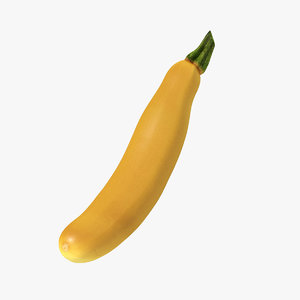 yellow zucchini 3D model