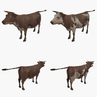 3D cow type 01 2 model