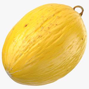 brazilian melon 01 3D