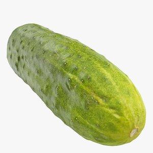 3D cucumber 07 hi polys