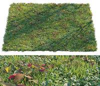 set grass model