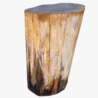 3D wet tree trunk stump model