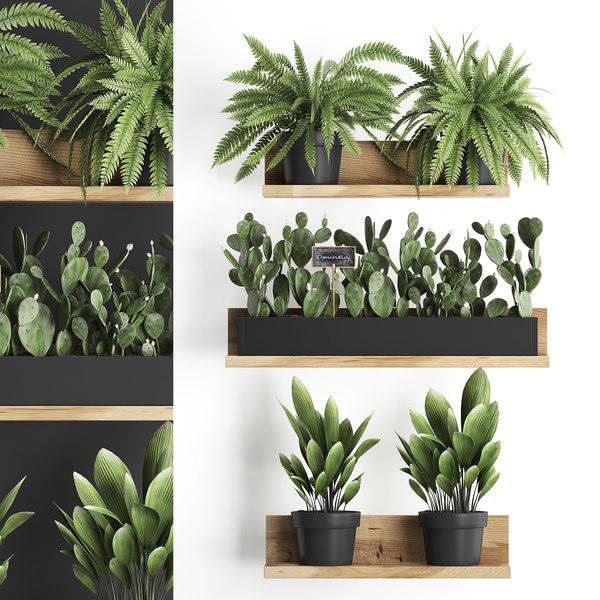 Plants Wall Decor Vertical Model