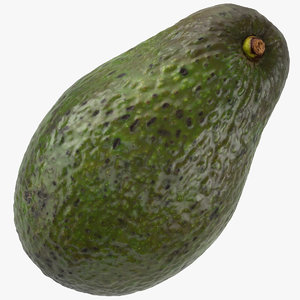 avocado hass 01 3D model