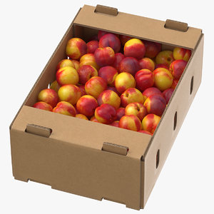 cardboard display box nectarines model