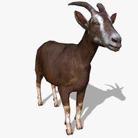 Goat Animated